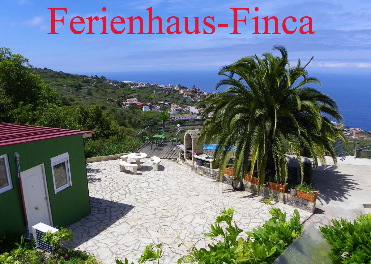 Villenfinca Teneriffa mit 4 Fincawohnungen in La Matanza.